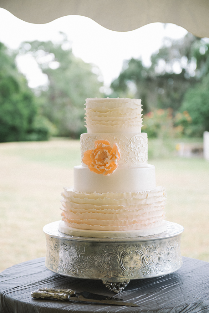 Tampa Wedding Planner Tampa Florida, Wedding Cake, Wedding Baker, Wedding Photographer, Oh So Classy Events, Hands on Sweets, Jonathan Fanning