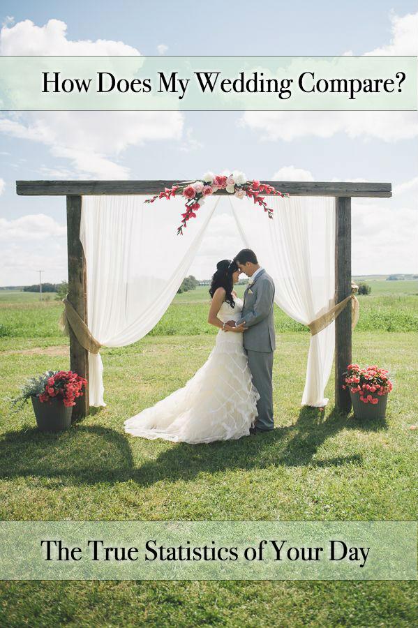 Wedding Planner Tampa