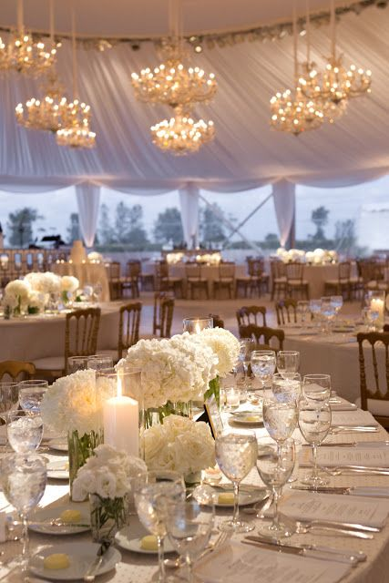 Tampa Wedding Planner